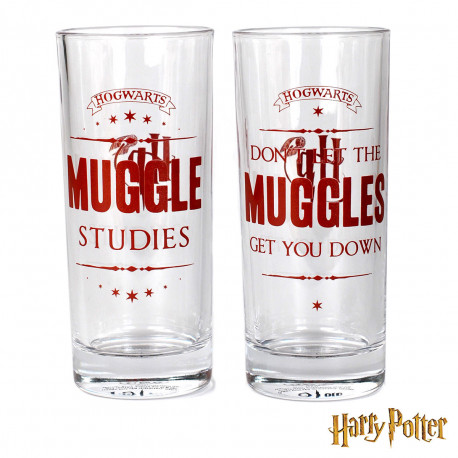 Verres Harry Potter Moldus - Lot de 2