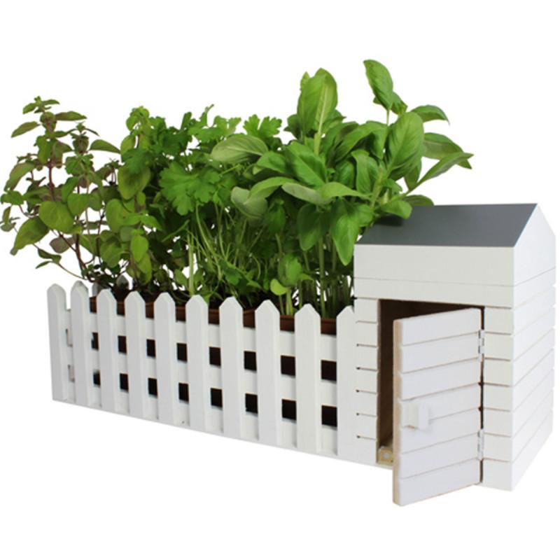 jardin aromatique d 39 int rieur kas design distributeur de cadeaux originaux et gadgets insolites. Black Bedroom Furniture Sets. Home Design Ideas